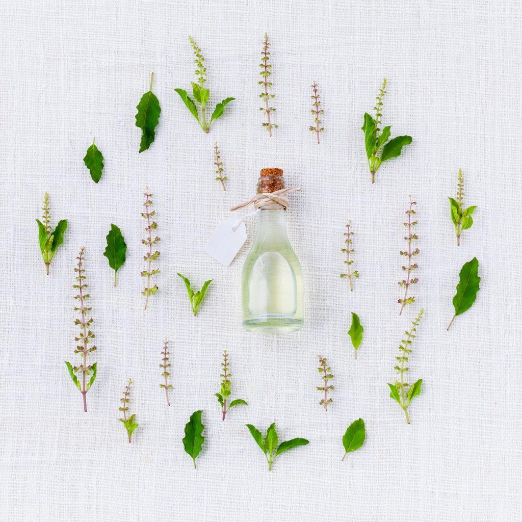 Aroma de albahaca.