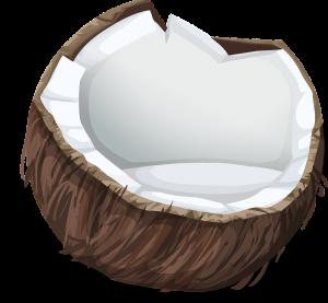Coco, fruto.