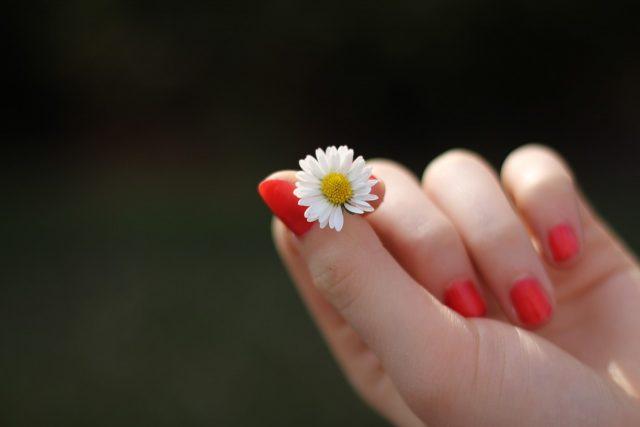 El mejor aceite para el tratamiento de uñas es el de ricino.