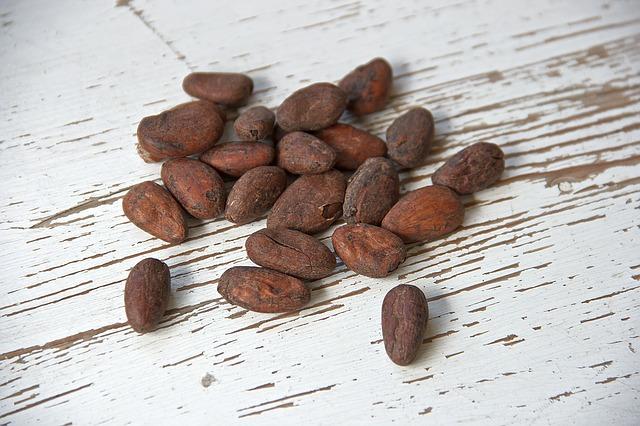 propiedades y composición cacao