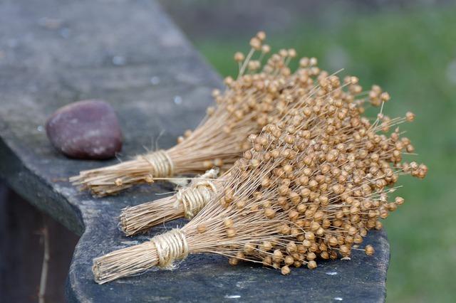 semillas de lino propiedades y beneficios