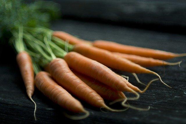 propiedades y composición aceite de zanahorias