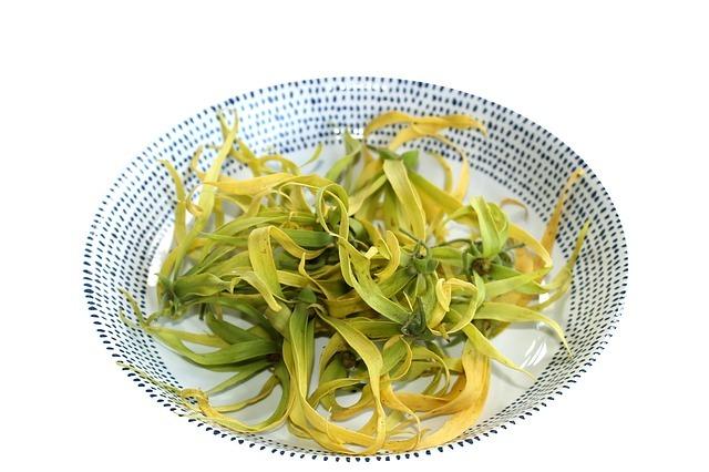 propiedades, usos, contraindicaciones aceite esencial ylang-ylang