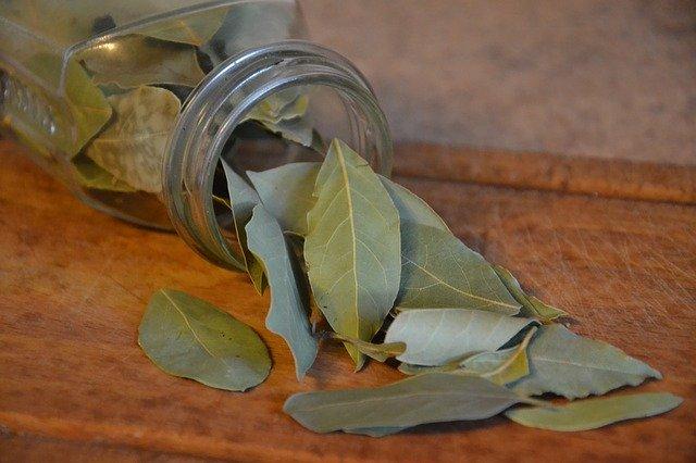 contraindicaciones, para que sirve aceite esencial de laurel