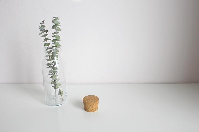 propiedades, para que sirve, contraindicaciones eucalipto