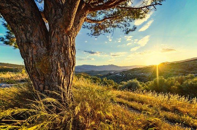 hidratar, cuidar la piel efter sun un bronceado luminoso y duradero