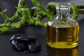 aceite de harpagofito