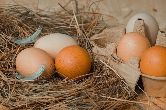 propiedades, beneficios, minerales del huevo