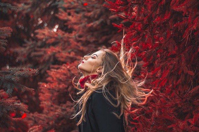 os mejores aceites vegetales para cuidar el cabello seco de forma natural manzanilla