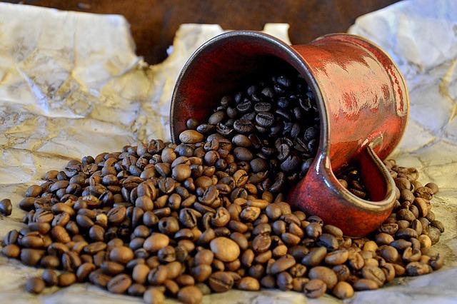 propiedades del aceite de grano de cafe