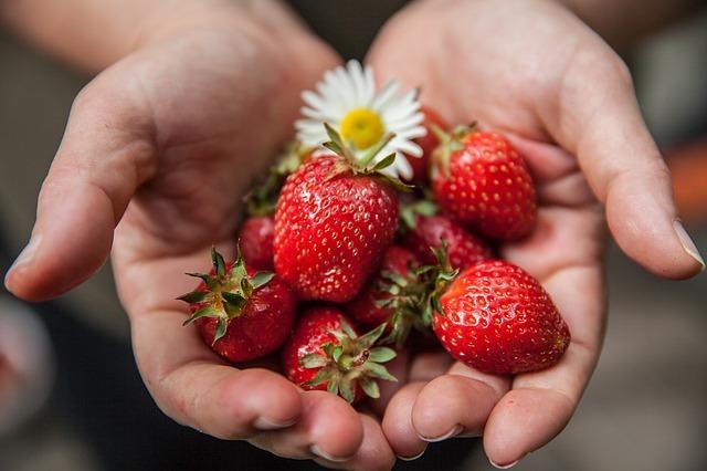 para que sirve y beneficios de la fresa